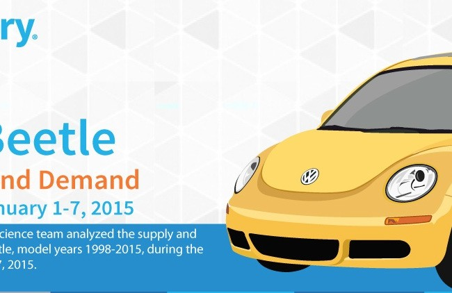 Market Reports: VW Bug Infographic